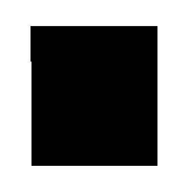 University of South Carolina Icon